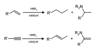 General hydroamination reaction.png