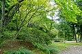 General view - Motsuji, Hiraizumi, Iwate - DSC04472.jpg