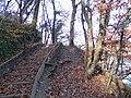 Geneve, Promenade le long du Rhone - panoramio (43).jpg