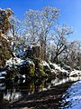 Georgia snow IMG 4827 (38911072622).jpg