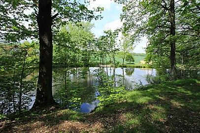 Geschützter Landschaftsbestandteil Schubertgrund in Sachsen.2H1A1390WI.jpg