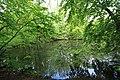 Geschützter Landschaftsbestandteil Schubertgrund in Sachsen. 2H1A0962WI.jpg