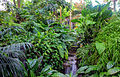 Gfp-st-louis-botanical-gardens-smalls-falls-in-climatron.jpg