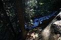 Giglachbach-landauersee 14902 2011-08-31.JPG