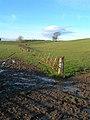 Glorious Mud - geograph.org.uk - 615295.jpg