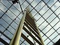 Goldene-Leiter (CherryX).JPG