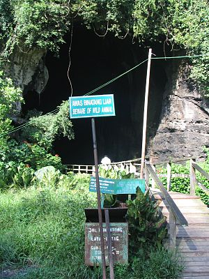 Gomantong Caves - Image: Gomantong Caves.Lauras 512