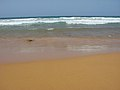 Gozo - Ramla Bay - Sea and sand.jpg