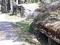 Gråkollen 2.jpg
