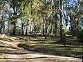 Grand Gulf Cemetery (305399103).jpg