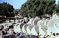 Grece Olympie Temple Zeus - panoramio.jpg