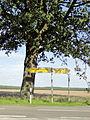 Groß Laasch Wegweiser 2011-08-20 111.JPG