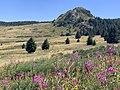 Grosse roche Chaudeyrolles n2.jpg