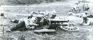 Fahrpanzer - 53 mm Gruson in infantry gun role in Romanian army