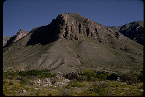 Guadalupe Mountains National Park GUMO3339.jpg