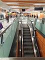 HK 港鐵 MTR 南港島線 South Island Line 利東邨站 Lei Tung Station January 2021 SS2 33.jpg