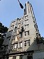 HK SW 上環 Sheung Wan 太平山街 Tai Ping Shan Street 差館上街 15 Upper Station Street 太山樓 Tai Shan House 去水渠 Drain pipe green tree April 2020 SS2 01.jpg