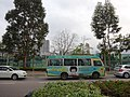 HK YL Yuen Long 馬棠路 Ma Tong Road Public Light Bus ads body Tsui Wah Restaurnt March 2016 DSC.JPG