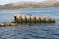 HMS Port Napier wreck 16.jpg