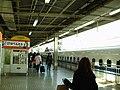 Hamamatsu Station Tokaido Shinkansen platform - 2.jpg