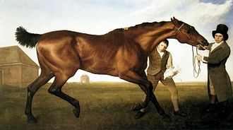 Hambletonian (horse) - Hambletonian Rubbing Down by George Stubbs