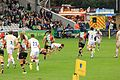 Harlequins vs Sharks (10509470994).jpg