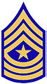 Harris County, TX Sergeant.jpg
