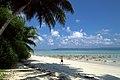 Havelock Island, East beach, Andamans.jpg
