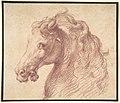 Head of a Horse MET DP802132.jpg