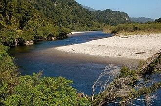 New Zealand Great Walks - Sub-tropical vegetation along Heaphy River