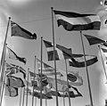 Helsingin olympialaiset 1952 - N210741 - hkm.HKMS000005-000002fv.jpg
