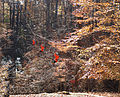 Hemlock Overlook - Zip-line - 02.jpg