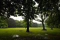 Het Kasteelpark van Bokrijk - 372237 - onroerenderfgoed.jpg