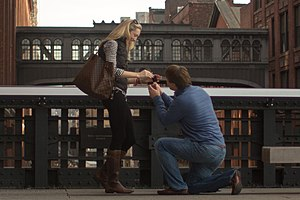 "Marriage proposal - A ""one-knee"" proposal on the High Line in New York City"
