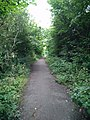 Highfield country park - nelstrop road.jpg