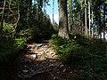 Hiking trail in the Heidetränk Oppidum.jpg