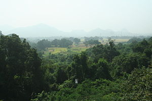 Paralakhemundi - Landscape
