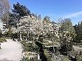Holmens Kirkegård 04.jpg