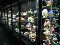 Hong Kong International Hobby and Toy Museum 007.JPG