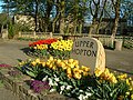 Hopton in Bloom Floral Displays - geograph.org.uk - 162026.jpg