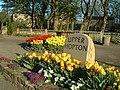 Hopton in Bloom Floral Displays - geograph.org.uk - 162026.jpg