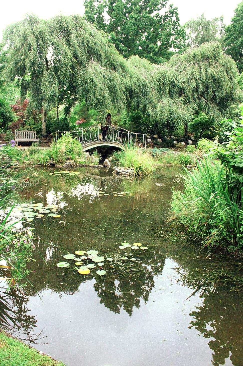Horder Japanese Garden Pond, Golders Green Crematorium