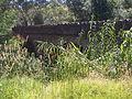 Horner's Bridge, Coromandel Valley.jpg