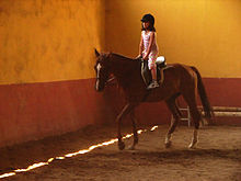 Horse-riding-07765-nevit.jpg