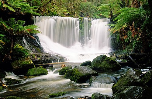 Horseshoe Falls, Mt Field National Park, Tasmania, Australia.
