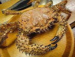 武装深海蟹