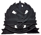 IDF Adjutant Corps Hat Badge.png