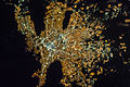 ISS-35 Night image of Monterrey, Mexico.jpg