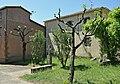 Iglesia de Sant Feliu de Buixalleu. (1).jpg