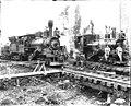 Index Galena Co trains, Snohomish County, ca 1925 (PICKETT 294).jpg